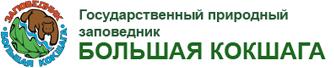 Большая Кокшага